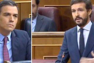 Casado avisa a Sánchez que no se irá de rositas: