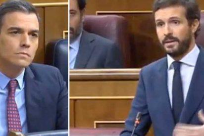 """Casado avisa a Sánchez que no se irá de rositas: """"Su caótico mando único le llevará a rendir cuentas en una Comisión de Investigación"""""""