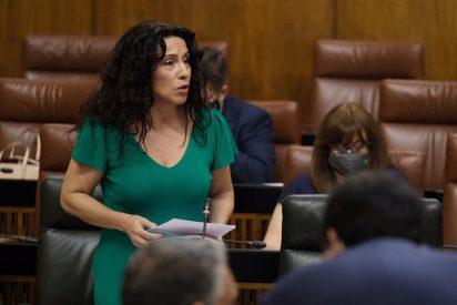 La Renta Mínima andaluza alcanza en junio su récord histórico con 17,3 millones para 20.000 familias