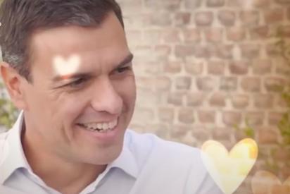 """Brutal vídeo viral: la concursante de First Dates que pide """"un tonto como Pedro Sánchez"""""""