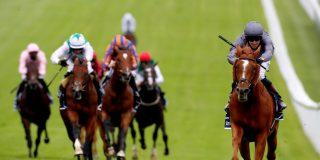 El caballo encabeza la carrera, pero justo antes del entrar en meta, cambia de opinión y hace esto