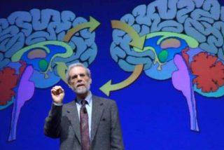 """Daniel Goleman y la """"inteligencia emocional"""" en el trabajo: cómo conquistar las 3 habilidades más poderosas"""