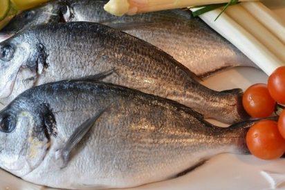 Esta es la insólita relación entre el consumo de pescado y la contaminación