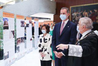 El varapalo real de Felipe VI a los 'indepes' en pleno aniversario del Tribunal Constitucional