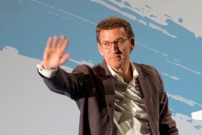Núñez Feijóo vuelve a arrasar en Galicia: cuarta mayoría absoluta, pinchazo del PSOE y tortazo monumental de Podemos