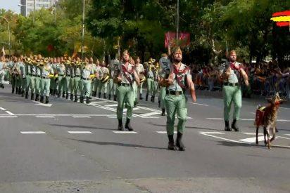 El Gobierno PSOE-Podemos suprime el Desfile militar del 12 de Octubre