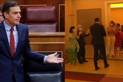 """Pedro Sánchez, víctima de la hemeroteca y del patético 'aplauso ministerial': """"Rajoy presume del rescate como si fuera una victoria"""""""