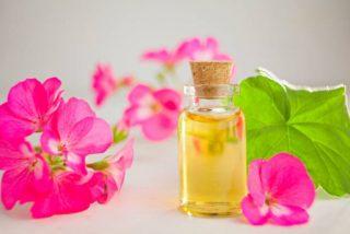 Propiedades del aceite esencial de geranio