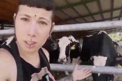 """Fanny La Vegana conquista Twitter con sus vídeos chorra: """"Estas vacas son personas: tienen personalidad y 'celebro'"""""""
