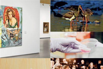 Cultura, medioambiente y acción social, los tres objetivos de la Fundación Banco Santander