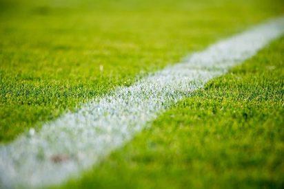 Línea de gol