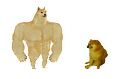 Viral: Lo que no sabías sobre el memedel perro grande y el pequeño que conquistó las redes durante la cuarentena