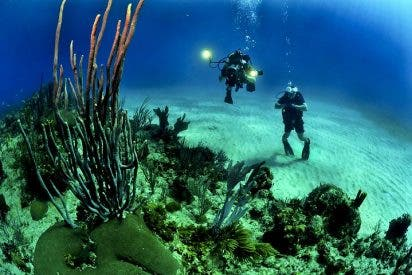 Aqua-Fi: ¿Internet bajo el agua? Así funciona el primer 'Wi-Fi submarino'