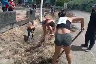 El tirano Nicolás Maduro obliga a realizar trabajos forzados a los venezolanos que pillan sin mascarilla