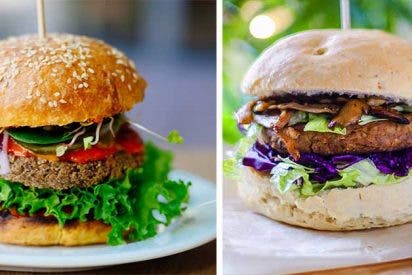 Hamburguesas veganas de lentejas y garbanzos, ¿cuál prefieres?