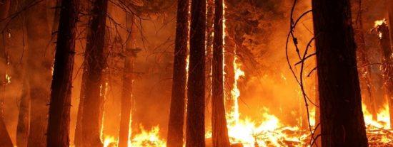 Arde España: 10.000 Hectáreas quemadas y 3.000 evacuados tras 4 días de incendio en Huelva