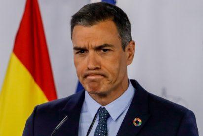 Oxford 'despluma' a Sánchez: España no está entre los países que más PCR realiza