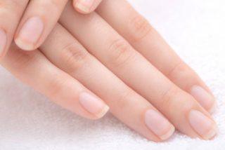 ¿Cuál es la función de la cutícula de las uñas?