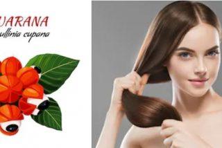 Propiedades del guaraná para el pelo