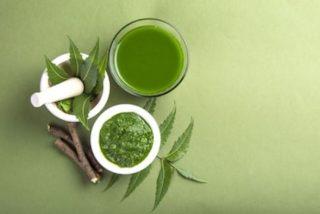 Propiedades del neem