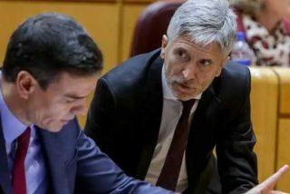 El funesto 'récord' de Sánchez y Marlaska: el Gobierno ha otorgado ya beneficios penitenciarios a 71 etarras