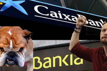Un Iglesias descompuesto manda a sus 'bulldog' para despedazar la fusión de Bankia y Caixabank