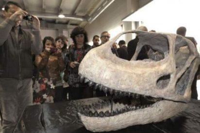 Los paleontólogos identifican un segundo dinosaurio gigante en Teruel