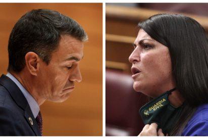 Olona baja de la parra a Sánchez: VOX recurrirá al Constitucional la Ley de Memoria Democrática