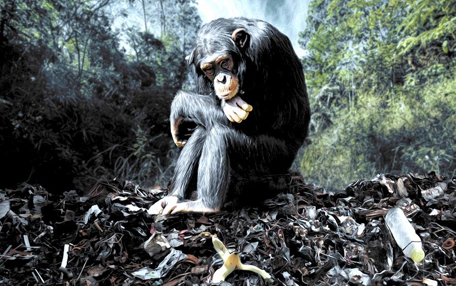 La biodiversidad al 'filo del abismo': El mundo perdió 68% de los animales en menos de 50 años