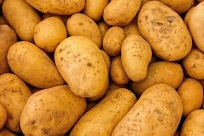 No desperdicies: así puedes conservar las patatas para que te duren más tiempo