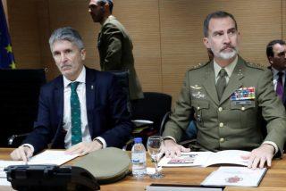 Policía y Guardia Civil desemascaran a Marlaska por vetar a Felipe VI