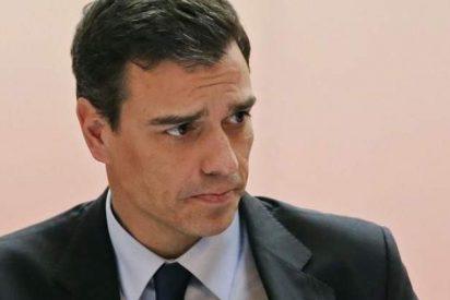 Asociaciones de Policía Nacional y Guardia Civil acorralan a Sánchez por lloriquear la muerte de un terrorista etarra