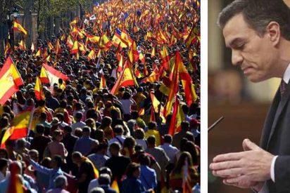 La 'Plataforma Pedro Sánchez Dimisión' saltará a las calles con una gigantesca marcha en Madrid