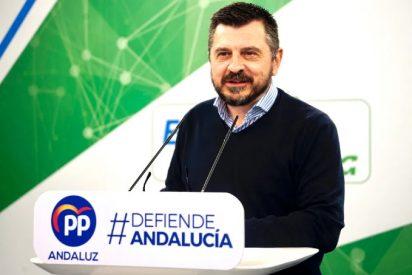 """El PP andaluz lamenta que Susana Díaz haya asumido el papel de """"asustadora oficial"""" con una oposición """"dañina"""" para los andaluces"""