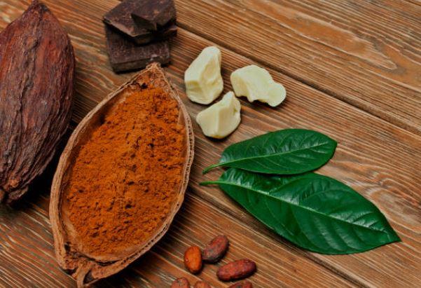 Manteca de cacao propiedades cosméticas