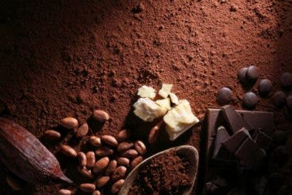 Manteca de cacao propiedades