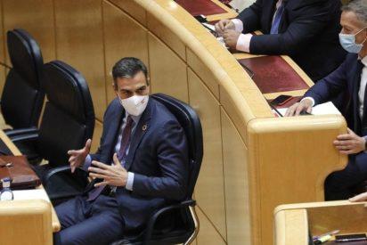 """A Pedro Sánchez se le cae la careta: pide unos Presupuestos """"sin exclusiones"""", mientras margina a VOX y ataca al PP"""