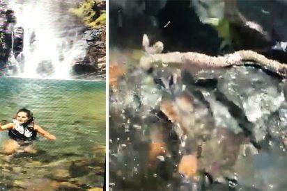 Una serpiente venenosa ataca a una mujer mientras se baña en un río y sus amigos graban el momento