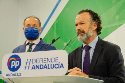 El PP exige a Sánchez acabar con el agravio constante del Gobierno contra Andalucía