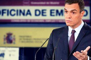 España: la ineptitud del Gobierno y el rebrote de coronavirus dejan sin empleo a 355.000 trabajadores