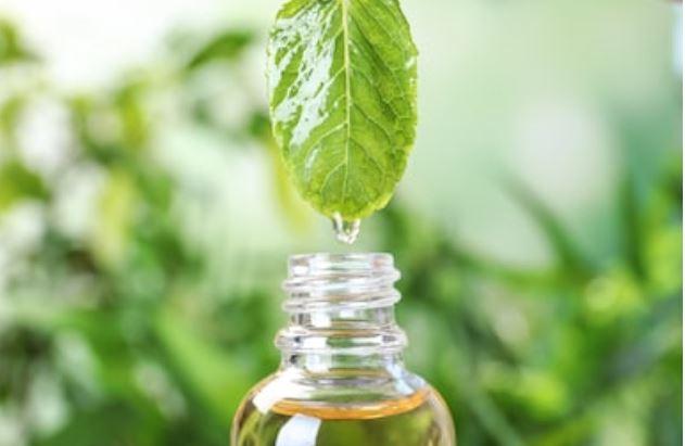 el aceite de menta