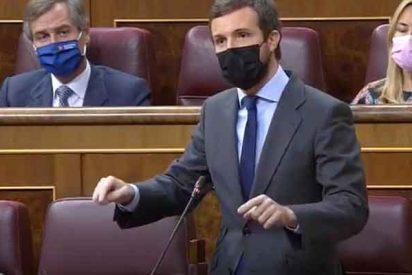 """Efrén Díaz Casal: """"Alerta al electorado madrileño y desafío a los dirigentes del PP"""""""