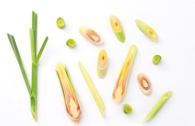 Limoncillo o lemongrass: propiedades