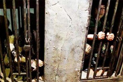 La HRW denuncia que los presos de Corea del Norte son considerados «menos que un animal»