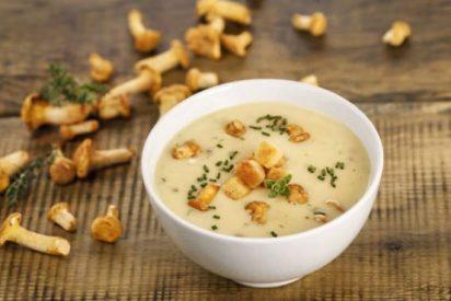 Sopa de setas recetas