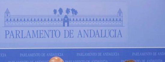 """VOX denuncia que la Junta de Andalucía """"está jugando"""" con los profesionales sanitarios"""