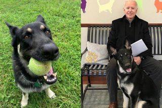Joe Biden se fractura el tobillo derecho cuando jugaba con su perro