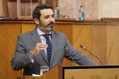 La izquierda (PSOE) y la extrema izquierda (Adelante) votan en contra de una ley anti ocupación