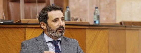 """El PP andaluz exige la retirada inmediata del decreto de la PAC: """"si no es capaz de escuchar al sector, Planas debe dimitir"""""""