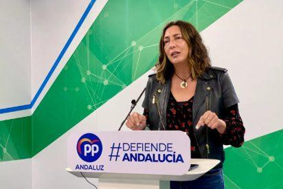 """Loles López (PP-A): """"Cuando Susana Díaz dice no a los presupuestos andaluces está diciendo no a esta tierra y al mayor presupuesto anticovid de nuestra historia"""""""